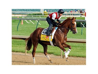 "Dullahan<br><a target=""blank"" href=""http://photos.bloodhorse.com/TripleCrown/2012-Triple-Crown/Works/22611108_LR3wcn#!i=1827792980&k=M4fJ96d"">Order This Photo</a>"