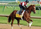 Haskell Targeted as Dullahan Returns to Work