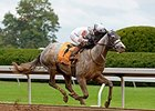 "Race Day sold for $285,000 Nov. 11 at the Keeneland November breeding stock sale.<br><a target=""blank"" href=""http://photos.bloodhorse.com/AtTheRaces-1/At-the-Races-2014/i-jkZ4bBH"">Order This Photo</a>"