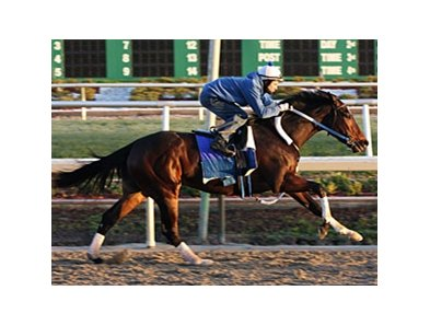 Rachel Alexandra posted her fourth workout of 2010 when she covered five furlongs in 1:00 1/5 over a fast track at Fair Grounds Race Course Feb. 18.