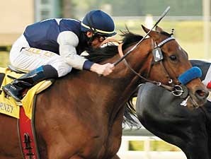 Celtic Dreamin in the Cal Cup Classic.
