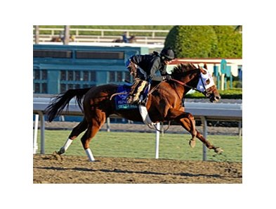 Groupie Doll
