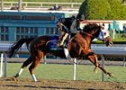 Groupie Doll at Santa Anita 10/29/2012.