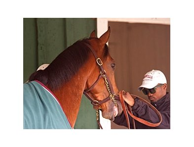 Kevin Krigger with Goldencents at Pimlico