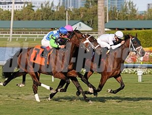 Doubles Partner defeats Lentenor in an allowance race at Gulfstream Park on February 17, 2010.