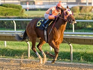 Third Chance wins the 2011 Powerless Handicap.