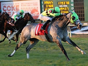 Due Date wins the 2010 Bonapaw.