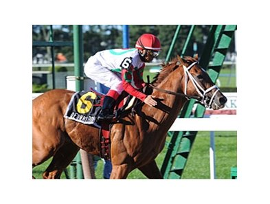 "D' Funnybone is aiming for the Preakness.<br><a target=""blank"" href=""http://www.bloodhorse.com/horse-racing/photo-store?ref=http%3A%2F%2Fpictopia.com%2Fperl%2Fgal%3Fprovider_id%3D368%26ptp_photo_id%3D8494286%26ref%3Dstory"">Order This Photo</a>"