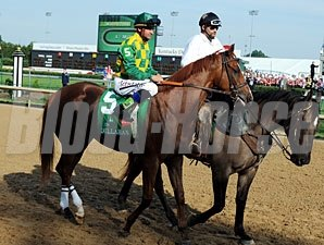 Dullahan in the post parade for Kentucky Derby 138.