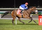 Monterosso pulls away to win the Dubai City of Gold.