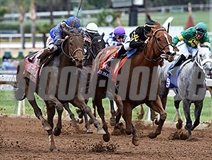 Judy the Beauty wins the 2014 DraftKings Breeders' Cup Filly & Mare Sprint