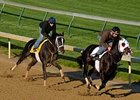 "I Want Revenge (left) breezed five furlongs with stablemate Gato Go Win at Churchill Downs on April 21. <br><a target=""blank"" href=""http://www.bloodhorse.com/horse-racing/photo-store?ref=http%3A%2F%2Fgallery.pictopia.com%2Fbloodhorse%2Fgallery%2F81492%2Fphoto%2Fbloodhorse%3A8026729%2F%3Fo%3D1"">Order This Photo</a>"