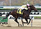 "The Lewis Dinner won the 2014 Key Cents Stakes. <br><a target=""blank"" href=""http://photos.bloodhorse.com/AtTheRaces-1/At-the-Races-2014/i-Z5V6ch8"">Order This Photo</a>"