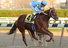 Haynesfield was named New York bred Horse of the Year by the NYTB.