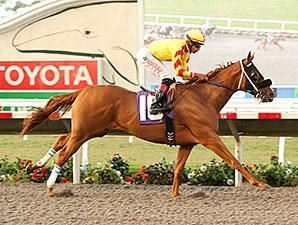 Red Outlaw wins the 2014 El Cajon Stakes.
