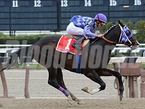 Eightyfiveinafifty wins the 2010 Bay Shore.
