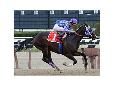 "Eightyfiveinafifty takes the Bay Shore at Aqueduct.<br><a target=""blank"" href=""http://www.bloodhorse.com/horse-racing/photo-store?ref=http%3A%2F%2Fpictopia.com%2Fperl%2Fgal%3Fprovider_id%3D368%26ptp_photo_id%3D8874345%26ref%3Dstory"">Order This Photo</a>"