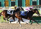 Zardana winning the New Orleans Ladies Stakes.