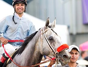 Freedoms Traveller wins the 2011 Canadian Derby.