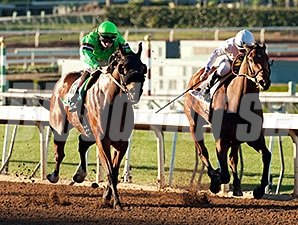 Spirit Rules wins the 2015 Donald Valpredo California Cup Sprint Stakes.