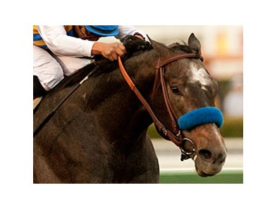 The Factor