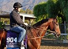"Trainer Brendan Walsh and Worldly <br><a target=""blank"" href=""http://photos.bloodhorse.com/BreedersCup/2013-Breeders-Cup/Sights-and-Scenes/33072966_qF5HST#!i=2869436848&k=rzjKKFV"">Order This Photo</a>"