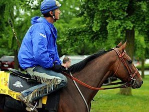 Mine That Bird's Jockey Situation Unresolved
