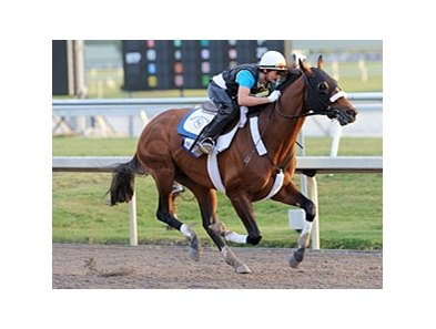 Mucho Macho Man worked five furlongs in :58 3/5 the morning of Jan. 5.