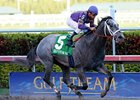 Flashpoint to Stand at Stud in Louisiana