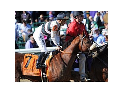 "Amazombie<br><a target=""blank"" href=""http://www.bloodhorse.com/horse-racing/photo-store?ref=http%3A%2F%2Fpictopia.com%2Fperl%2Fgal%3Fprovider_id%3D368%26ptp_photo_id%3D9729408%26ref%3Dstory"">Order This Photo</a>"