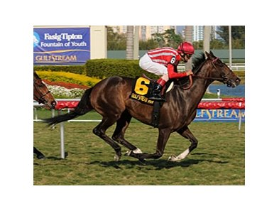 La Luna de Miel wins the 2011 Orchid Stakes.