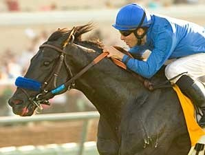 Get Funky wins the 2007 Morvich