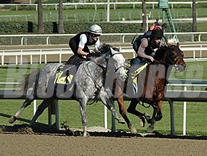 Flashback (outside) works with Den's Legacy at Santa Anita.2/25/2013