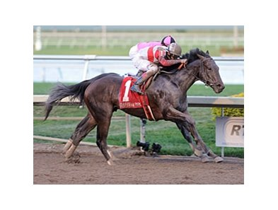 "Orb winning the Fountain of Youth<br><a target=""blank"" href=""http://photos.bloodhorse.com/AtTheRaces-1/at-the-races-2013/27257665_QgCqdh#!i=2378939915&k=cMsGzkG"">Order This Photo</a>"