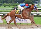"Travers winner Summer Bird is scheduled to make his next start in the Jockey Club Gold Cup. <br><a target=""blank"" href=""http://www.bloodhorse.com/horse-racing/photo-store?ref=http%3A%2F%2Fpictopia.com%2Fperl%2Fgal%3Fprovider_id%3D368%26ptp_photo_id%3D8443499%0D%0A%26ref%3Dstory"">Order This Photo</a>"