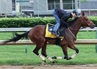 Mine That Bird breezed 4 furlongs at Churchill Downs on May 11.