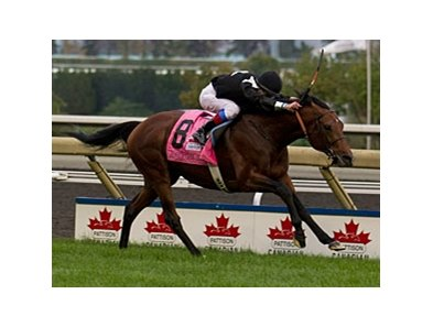 Joshua Tree wins the Pattison Canadian International.