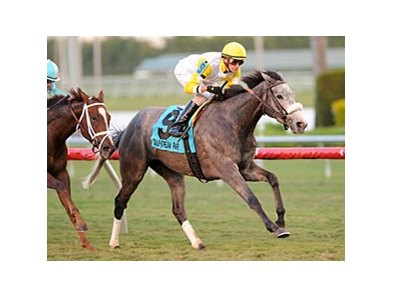 "Hard Not to Like pulls away late to take the Marshua's river stakes.<br><a target=""blank"" href=""http://photos.bloodhorse.com/AtTheRaces-1/at-the-races-2013/27257665_QgCqdh#!i=2306237899&k=fgT4jZH"">Order This Photo</a>"