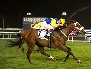 Shea Shea wins the 2013 Al Quoz Sprint.
