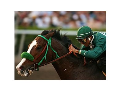 2007 Sunshine Millions Classic winner McCann's Mojave takes on 6 in the Berkeley Stakes.