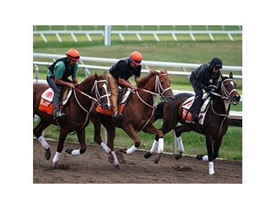Ruler On Ice, center, working on September 20, 2011.