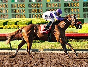 Wake Up Nick wins the Barretts Juvenile Stakes.