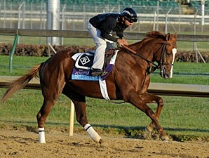 Dullahan - Churchill Downs, Nov 1, 2011.