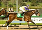 "Final Fling sweeps to an upset win in the Santa Ysabel Stakes.<br><a target=""blank"" href=""http://www.bloodhorse.com/horse-racing/photo-store?ref=http%3A%2F%2Fpictopia.com%2Fperl%2Fgal%3Fprovider_id%3D368%26ptp_photo_id%3D3286482%26ref%3Dstory"">Order This Photo</a>"