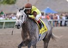 "Graydar won the Donn Handicap on Feb. 9.<br><a target=""blank"" href=""http://photos.bloodhorse.com/AtTheRaces-1/at-the-races-2013/27257665_QgCqdh#!i=2357990522&k=pGkQBsk"">Order This Photo</a>"