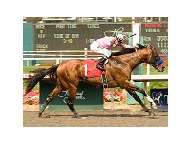 "E Z's Gentleman delivers in the Triple Bend, giving Martin Pedroza his 1000th win at Hollywood Park.<br><a target=""blank"" href=""http://www.bloodhorse.com/horse-racing/photo-store?ref=http%3A%2F%2Fpictopia.com%2Fperl%2Fgal%3Fprovider_id%3D368%26ptp_photo_id%3D9102081%26ref%3Dstory"">Order This Photo</a>"