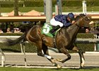 "Mr. Commons<br><a target=""blank"" href=""http://www.bloodhorse.com/horse-racing/photo-store?ref=http%3A%2F%2Fpictopia.com%2Fperl%2Fgal%3Fprovider_id%3D368%26ptp_photo_id%3D9442396%26ref%3Dstory"">Order This Photo</a>"