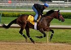 Bob Black Jack worked a half-mile at Churchill Downs late Monday morning in :48 3/5.