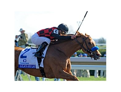 "Lilacs and Lace upsets the Ashland at 48-1.<br><a target=""blank"" href=""http://www.bloodhorse.com/horse-racing/photo-store?ref=http%3A%2F%2Fpictopia.com%2Fperl%2Fgal%3Fprovider_id%3D368%26ptp_photo_id%3D9484047%26ref%3Dstory"">Order This Photo</a>"