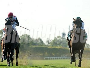 Western Aristocrat wins the 2011 Jamaica.